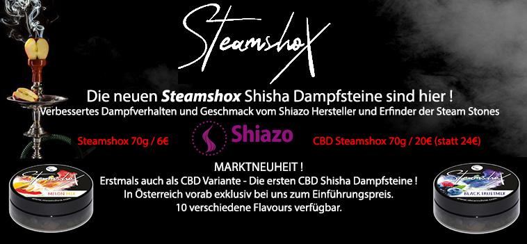 Steamshox Dampfsteine